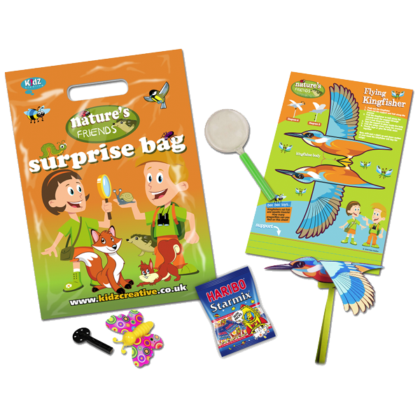 10 Pack Mixed Box Surprise Party Bag